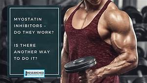 Pin By Researched Supplements On Bodybuilding
