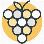 Icon Bunch Grapes Fruit Healthy Vector 512px