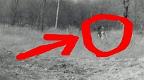 REAL ALIEN PHOTO EVIDENCE 1952 EXPOSED - YouTube