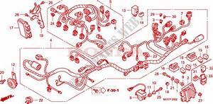 Wire Harness  Cbf600s8  Sa8  N8  Na8  For Honda Cbf 600