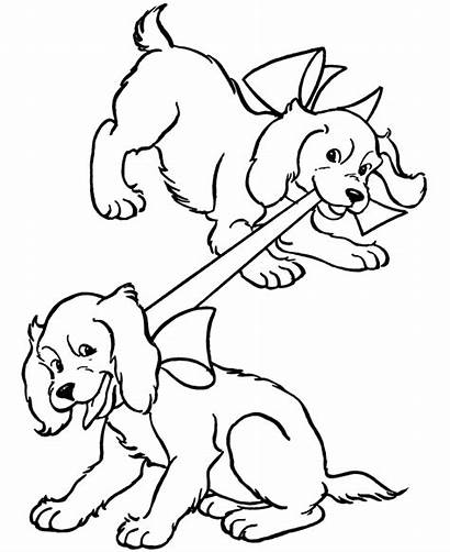 Coloring Puppy Pages Fun