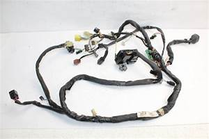 2004 04 Suzuki Volusia Vl800 Vl 800 Wire Harness