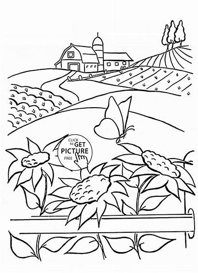 Coloring Pages Scenery Flower Summer Printables Printable