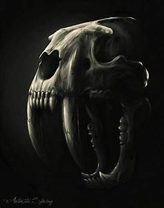 Images Of Saber Tooth Tiger Skull Tattoo Golfclub
