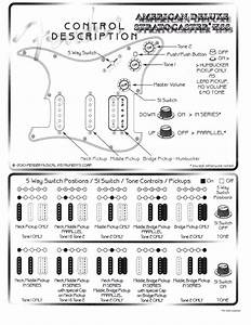 American Deluxe Stratocaster Hss Wiring Diagram
