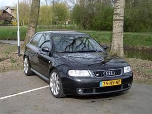 Audi A3 1999 : rob s3 1999 audi a3 specs photos modification info at cardomain ~ Medecine-chirurgie-esthetiques.com Avis de Voitures
