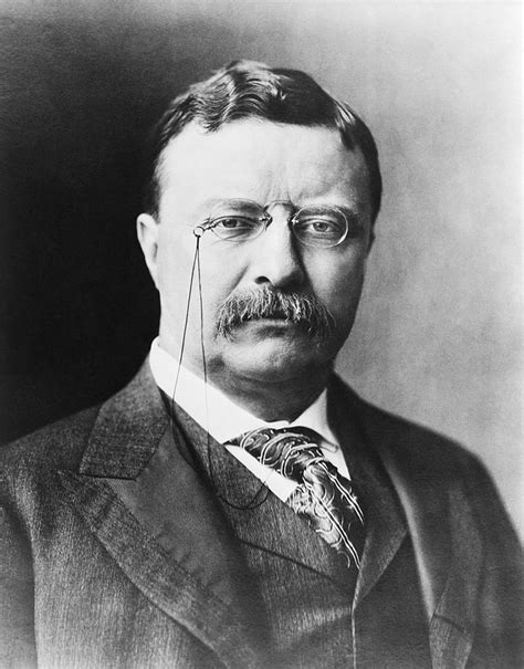 Teddy Roosevelt Images Teddy Roosevelt Simplifies Spelling
