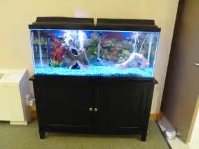 Home Fish Tanks Aquariums