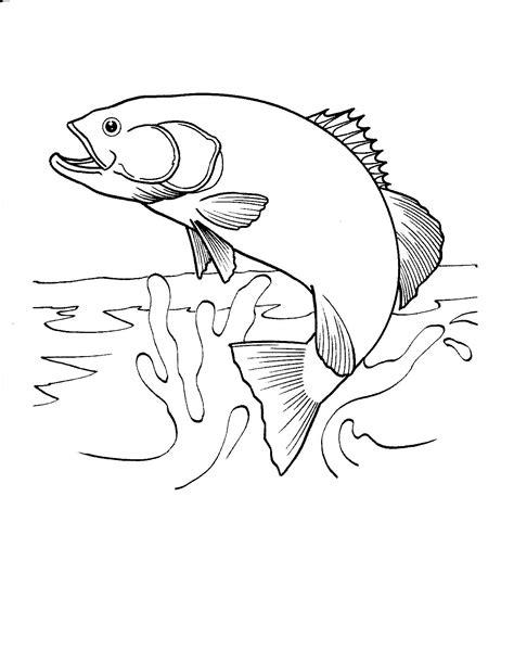 printable fish coloring pages  printable fish