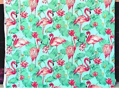 Flamingo Fabrics Fabric Flamingos Salmon Shades Pink