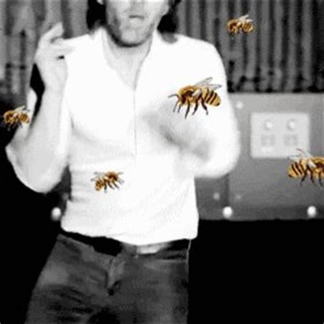 Thom Yorke Meme - 147 best images about gifs on pinterest bruce lee chuck norris gifs and punk rock