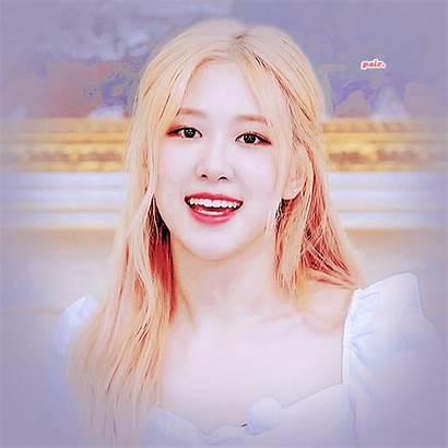 Blackpink Rose Aesthetic Korean Pink Gifs Heart