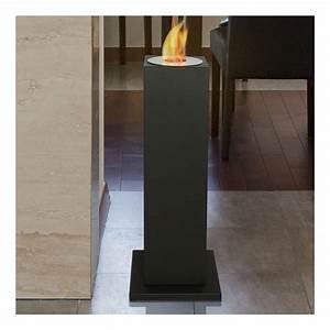 Petite Cheminee Ethanol : cheminee bio ethanol colonne ~ Premium-room.com Idées de Décoration
