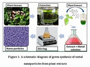A Review On Green Synthesis Of Cu And Cuo Nanomaterials