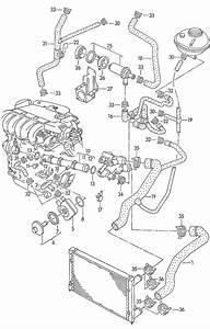 New Engine Coolant Pipe  Vw  Corrado  Jetta  92