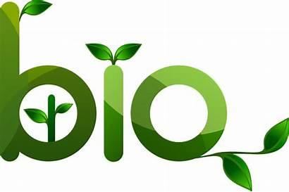 Bio Friendly Environment Eco Plant Symbol Ecology