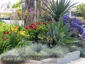 Succulent Gardens - Eclectic - Landscape - san diego - by