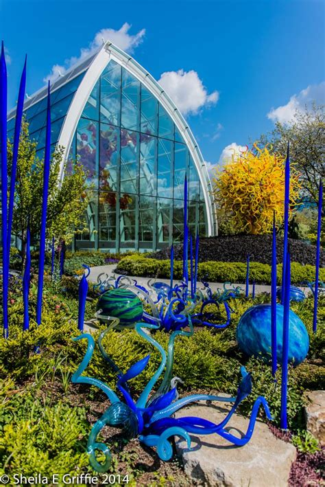 Chihuly Garden And Glass House 268 best images about seattle a visitors guide to the