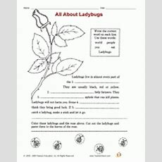 Science Activities And Printables For Second Grade Familyeducation