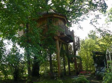 des chambres d hôtes perchées dans les arbres