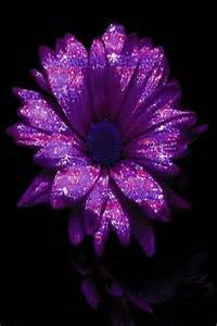 Flowers and Purple Sparkle Wallpaper