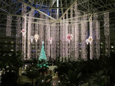 christmas lights picture of gaylord palms resort