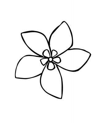 jasmine flower simple drawing | chinese | Pinterest