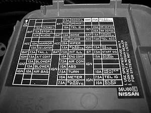 Diagram On 2007 Nissan Maxima Fuse Panel