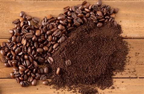 ↑plural, ↑plural form • hypernyms: Cold Brew 101: Choosing The Right Cold Brew Coffee Grounds - Willow & Everett