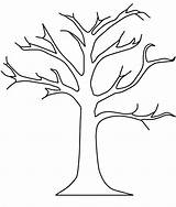 Tree Printable Coloring Trunk Leaves Without Pattern Template Branches Printablee sketch template