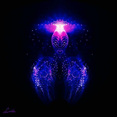 Animated Jellyfish Wallpaper - animated jellyfish wallpaper wallpapersafari