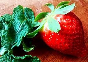 Kann Man Minze Einfrieren : erdbeer traum mit einem hauch fruchtiger minze julife ~ Lizthompson.info Haus und Dekorationen