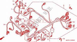 Wire Harness  Front  For Honda Vtr 1000 Sp1 100cv 2001