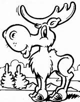 Moose Coloring Pages Printable sketch template