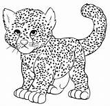 Leopard Snow Coloring Pages Baby Printable Print Getcolorings sketch template