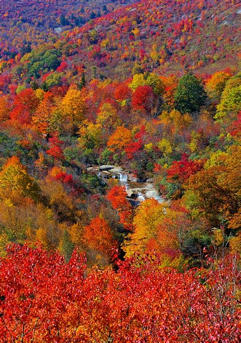 fall color stunning fall color along the blue ridge parkway in
