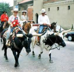 monter comme un cheval monter une vache 1 forum cheval
