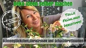 Deko Ideen Selbermachen : diy deko ideen zum selber machen kreative christrosen ~ A.2002-acura-tl-radio.info Haus und Dekorationen