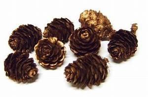 Pom De Pin Sallanches : l rchenzapfen kupfer eur 1 99 miroflor floristik ~ Premium-room.com Idées de Décoration