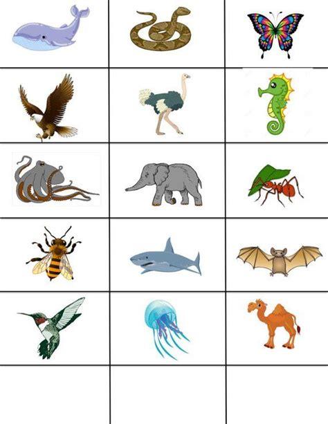 preschool science printable sorting animals preschool