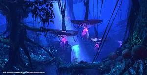 Pandora: a whole new world