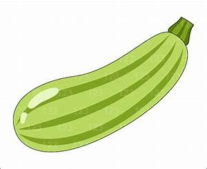 Zucchini clipart single vegetable - Pencil and in color ...
