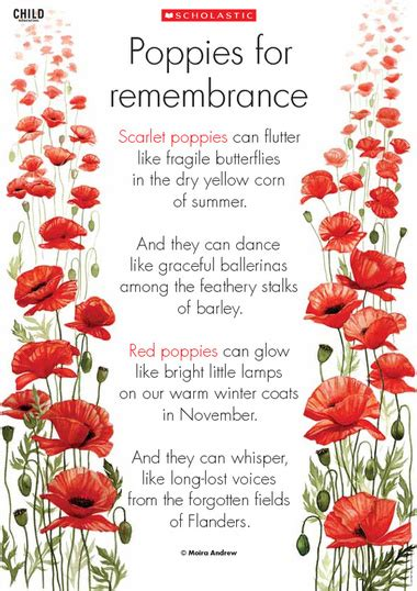 poppy poems for remembrance day remembrance day remembrance day poem to use as a discussion starter and to explore in