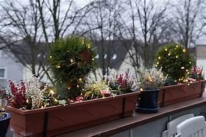 Balkon Im Winter Gestalten : weihnachtliche balkonk sten 2012 little green planet ~ Markanthonyermac.com Haus und Dekorationen