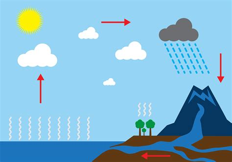 Water Cycle Images Free Water Cycle Diagram Vector Free Vector
