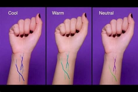 how to what foundation color you are it s all in your veins blue veins you cool
