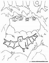 Cave Coloring Clipart Bat Cartoon Preschool Bats Template Webstockreview Sketch Pencil Designlooter Found Drawings sketch template