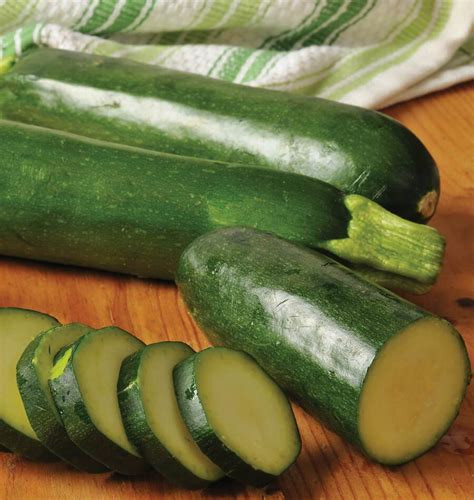 How to Grow Zucchini from Seed - West Coast Seeds