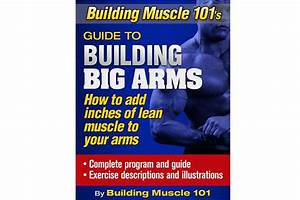 Building Muscle 101 U0026 39 S Guide On Building Big Arms
