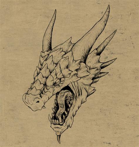 draw  realistic dragon head   space tuts